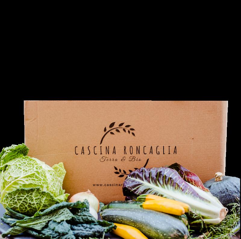 Solo verdura